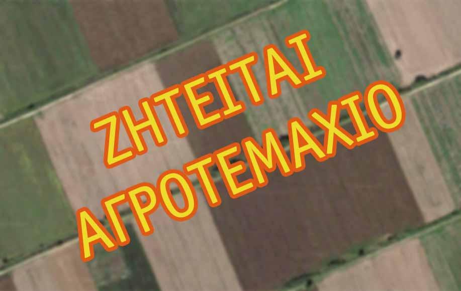 Ζητείται αγροτεμάχιο στην περιοχή του Μυλοποτάμου | TaMeteora.gr